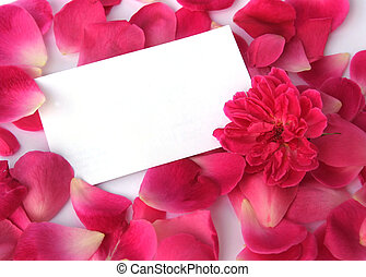 Petals and a flower with a blank card for your text; Focus on card.