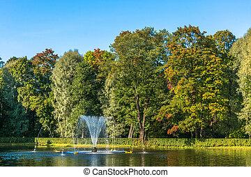 peterhof., fontaine, petit, parc, étang