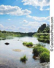 petit, îles, herbe, rivière verte
