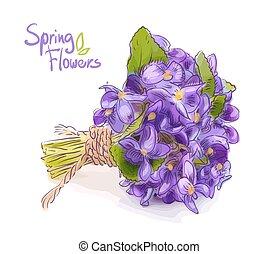 petit, bouquet, pré, violets.