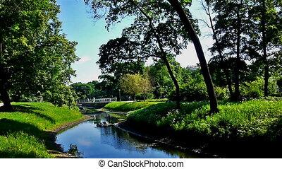 petit, carrée, rivière verte