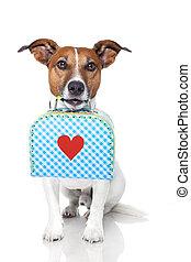 petit, coeur, chien, grand, bagage