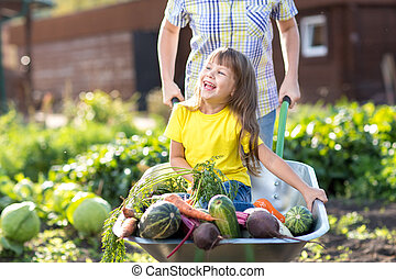 petit enfant, girl, intérieur, brouette, à, légumes, dans jardin