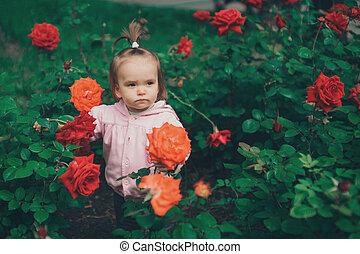 petit enfant, roses, flowers., promenades, girl