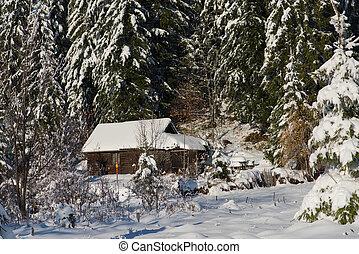 petit, frais, neige, cabine, couvert