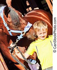 petit garçon, cheval, écurie
