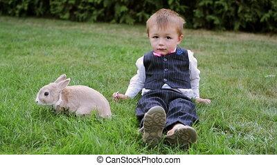 petit garçon, jouer, lapin