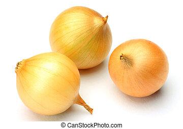 petit onion - I took three petit onions in a white...