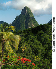 The small piton on the Caribbean island of St. Lucia.