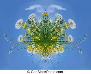 petit, planète, fleur