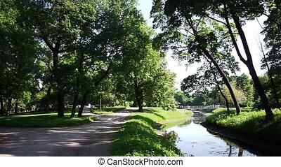 petit, rivière verte, parc