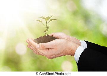 petit, sol, plante, tenue, personne
