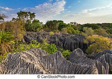 Petit Tsingy Madagascar - Beautiful view on the unique...