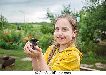 petite fille, à, a, printemps, chicken.