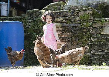 petite fille, alimentation, chicken.