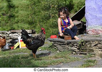 petite fille, alimentation, poulet, extérieur