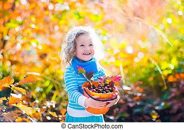 petite fille, cueillette, glands, dans, automne, parc
