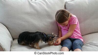 petite fille, mignon, jouer, chien