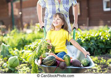 petite fille, séance, dans, les, brouette, à, légumes, récolte, dans, jardin