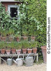 petite maison, arrosage, jardin, boîtes