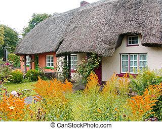 petite maison, couvert chaume, irlande, toit, typique