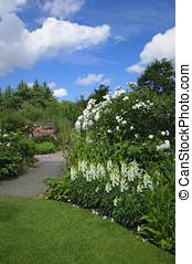 petite maison, devon, jardin anglais