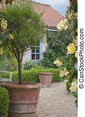 petite maison, fleurir, jardin anglais