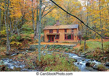 petite maison, forêt, automne