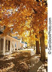 petite ville, automne