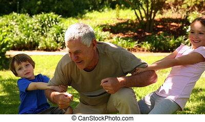 petits-enfants, jouer, grand-père, sien