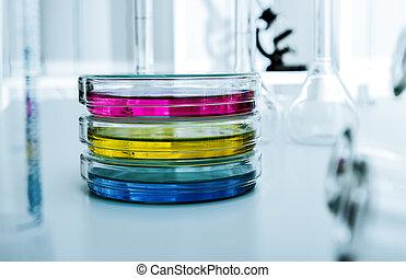 petri fad, hos, kultur, medie, ind, den, laboratorium