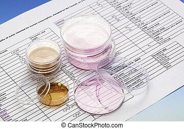 petri rätt, för, kemisk, och, microbiological, analys