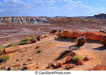 Landscape of the ancient petrified forest in Arizona