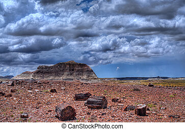 Petrified Forest Storm