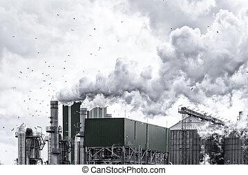 petrochemical απάτη , ρότερνταμ