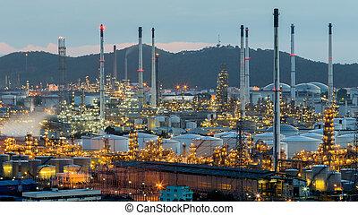 Petrochemical power plant