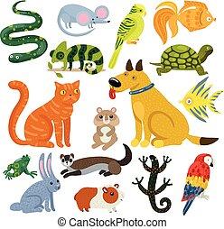 Pets Colorful Icons Set