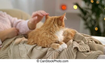 woman stroking red tabby cat in bed at home - pets, comfort,...