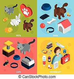 Pets Veterinary Isometric Set