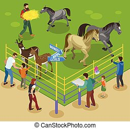 Petting Farm Composition