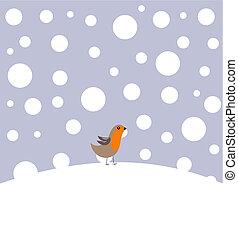 pettirosso, in, inverno