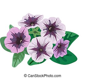 Flowers and leaves petunia bush on a white background.