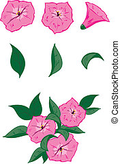 Vector objects for drawing up own flower compositions: 3 pink flowers of a petunia and 3 leaves. And also an example of possible composition.