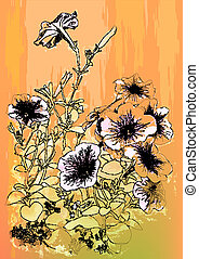 Petunias flowers. Hand drawn  illustration in vintage style