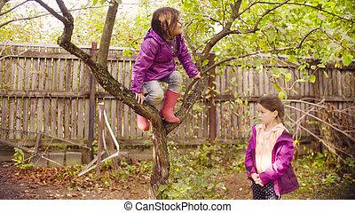 peu, arbre, haut, regarder, pommes, escalade, girl