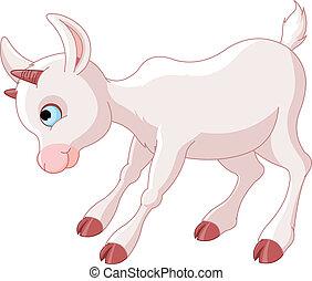 peu, bébé, chèvre