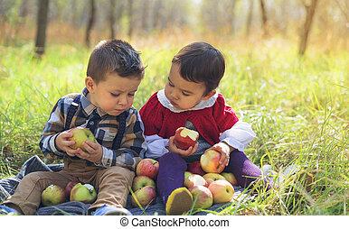 peu, badine manger, parc, deux, pommes