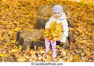 peu, beauté, feuilles, parc, automne, girl, adorable