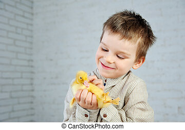 peu, caneton, jaune, nouveau né, garçon, fond, mains, blanc