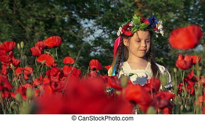 peu, champ, girl, coquelicots